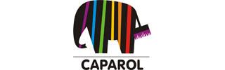 перейти на сайт CAPAROL